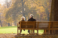 Pension Plan Limitations for 2010
