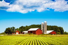 Agricultural Businesses Need Credit Union Funding Now - 17 August 2012