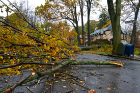 Credit Unions Rally Following Hurricane Sandy